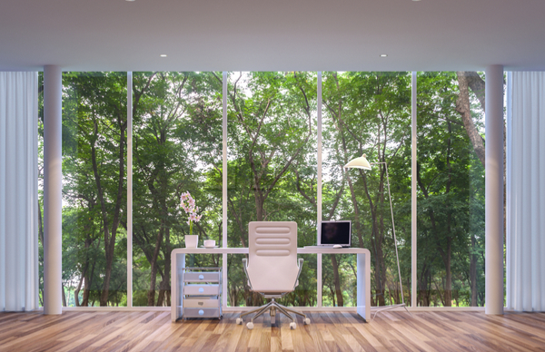 Biophilia – Bringing Nature into the Office to Reduce Stress